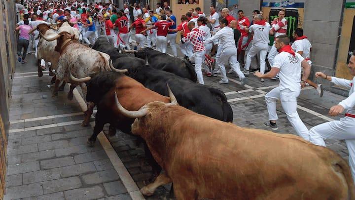 Bull Run Sanfermines
