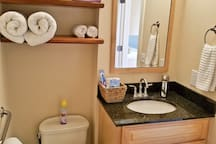 Bathroom Sink has vanity and a Toto toilet with arm assist rail on wall.