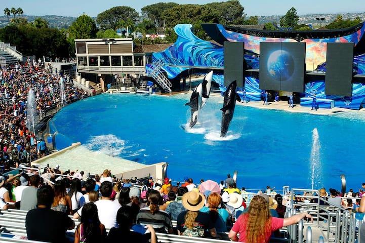 15 Minutes from Disney World # 746 - Kissimmee - Villa