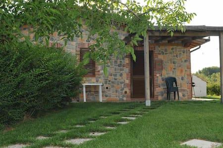 Il Giglio Verde In Maremma - Massa Marittima - Apartmen