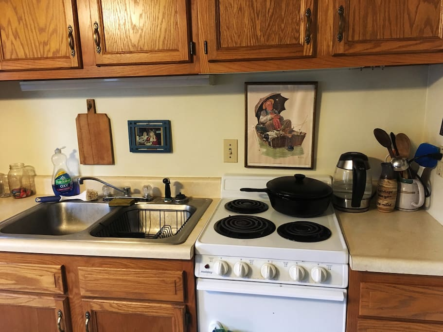 Kitchen has basic appliances: hot water kettle, electric stove, toaster, dish washer, microwave, and oven.