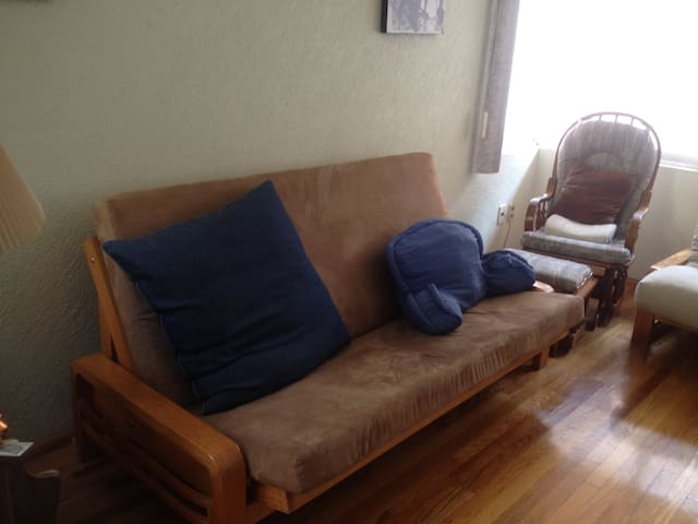 Sala de tv con dos sofáñ-camas y un colchon