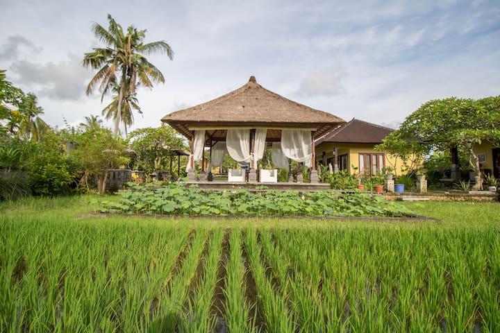 Breezy Countryside Villa w/ Relaxing Atmosphere #G - Sukawati