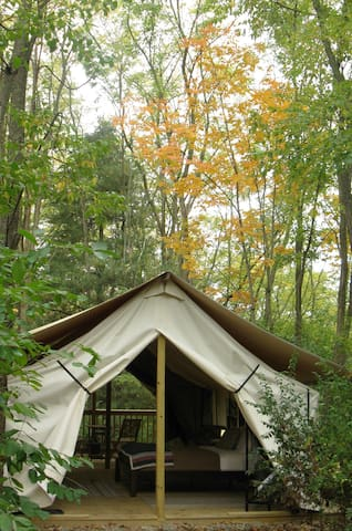 Seneca Sol Tent (King) - Willow - Burdett - Zelt