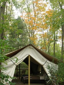 Seneca Sol Tent (King) - Willow - Burdett - Teltta
