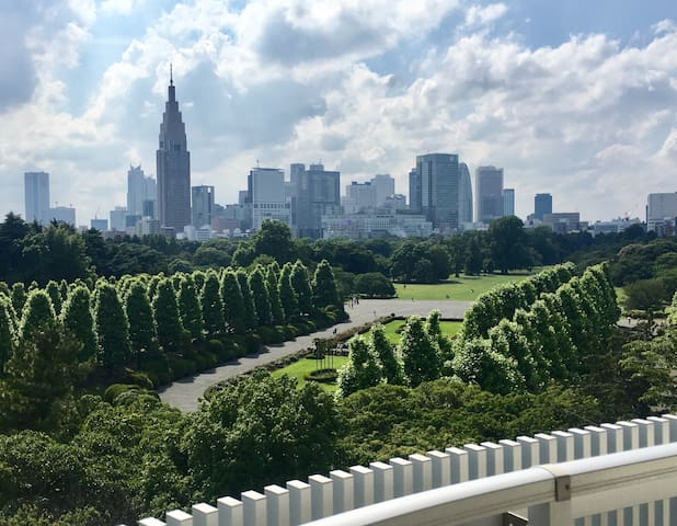 New!! #7, The park view, Penthouse, Shinjuku