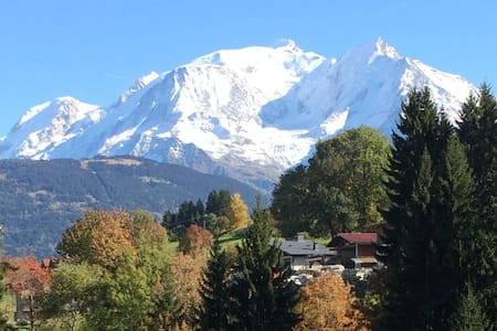 Appartment with balcony and Mont-Blanc view-2 pers