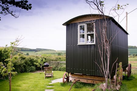 Shepherd's Hut - self catering/B&B - Salisbury - Hut