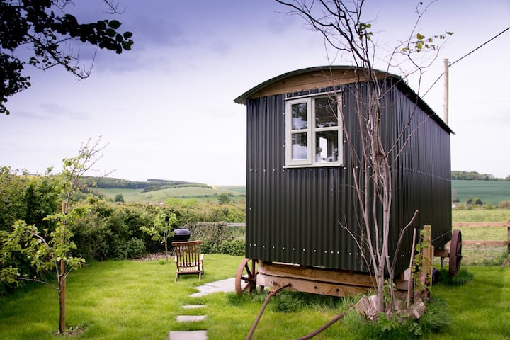 Shepherd's Hut with hot tub use near Stonehenge