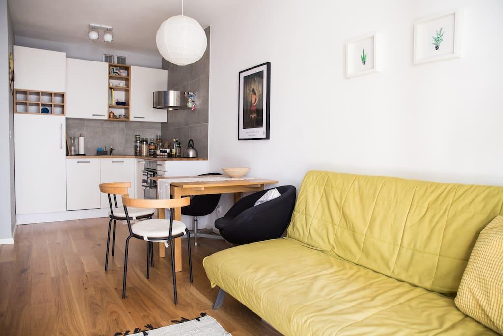 Salon z aneksem kuchennym // Living room with a kitchenette