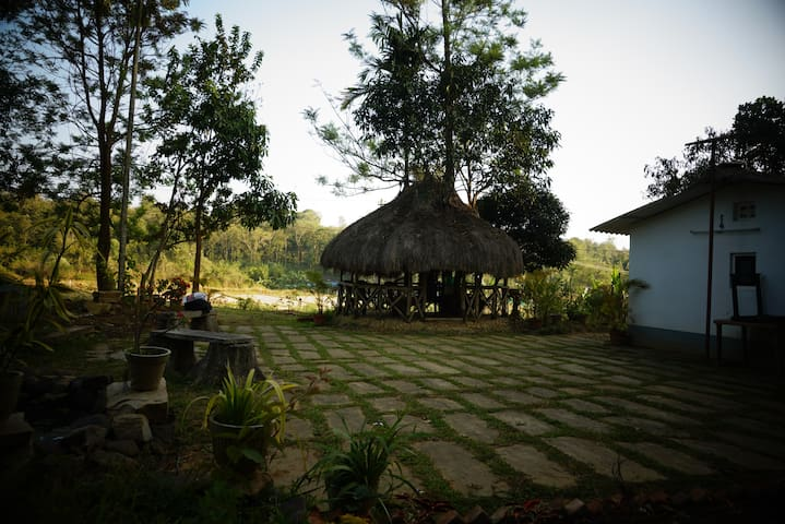 Tree House in Farm Land