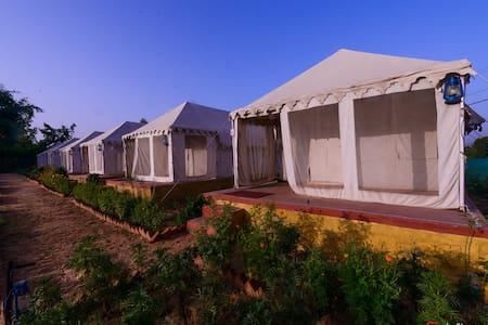 The Narayan Resort     Camping Resort - Pushkar