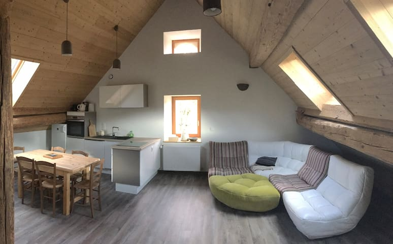 Beautiful flat in the Vercors - Grenoble Mountain