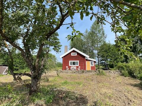 """Anstalten"" - Hytte på Tingnes, Nes på Hedmark"