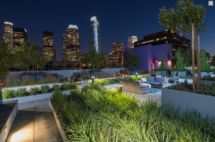 Luxury Apartment with BEST Downtown LA View