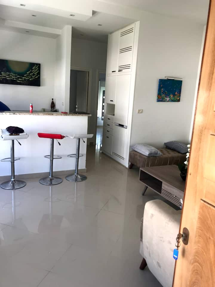 Beautiful luxurious apartment-150 meter from beach