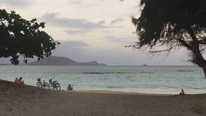 Kailua Oasis