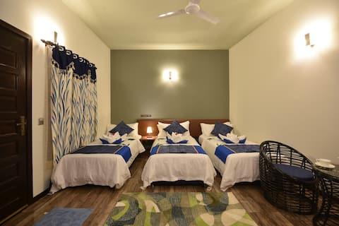 Superior Double or Triple Room @ Ukulhas Maldives
