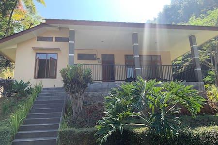 Villa Flamboyan- a perfect place to enjoy nature