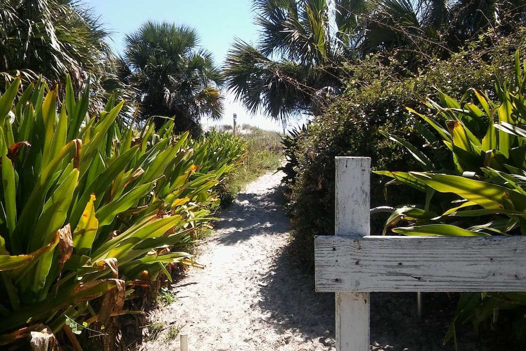 Beginning of beach path