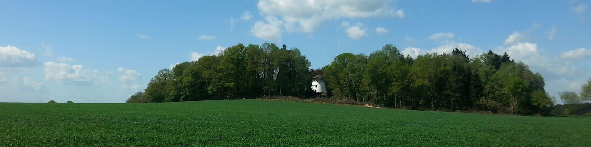 Windmill Schneeren - Neustadt am Rübenberge - Huis