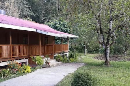 Yangsum Heritage Farm- Out House with varandah - Rinchenpong - Bed & Breakfast