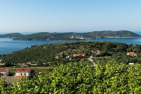 Splendid view hilltop 3-bedroom vacation house - Orašac - Hus