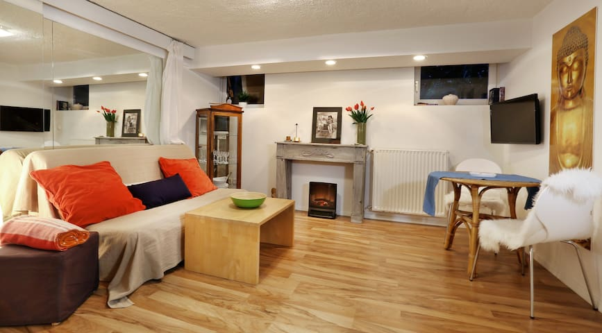 Cosy flat with a private sauna - Lublana - Apartament