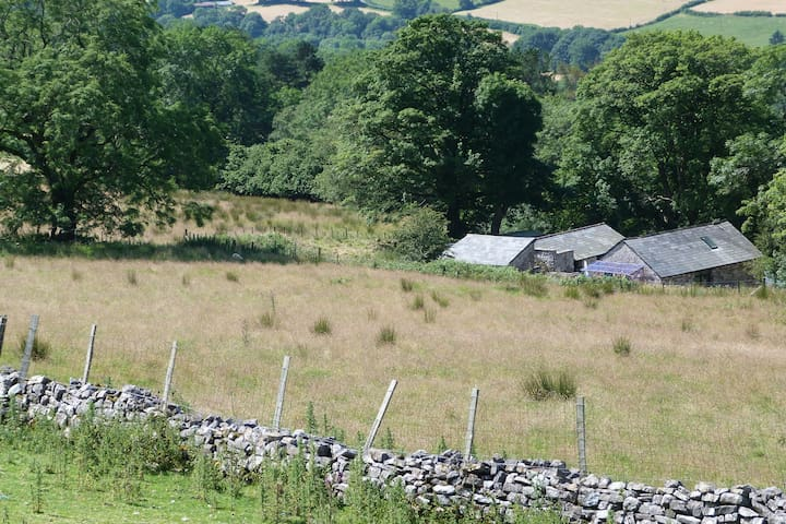 Llywn Onn Barn, Ystradfellte, Brecon Beacons: - Ystradfellte - Huis