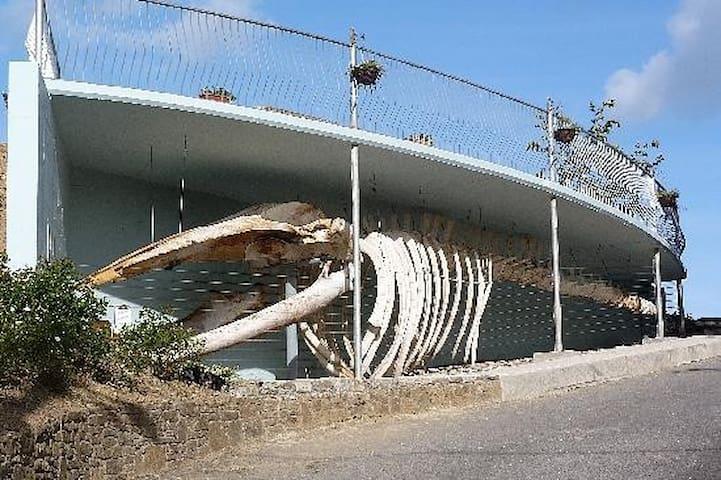 Visit the Kilbrittian whale next to Kilbrittian playground, 5 mins away by car.