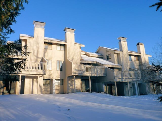 Bromley Village Ski Resort - 20 min to Stratton! - Peru - House