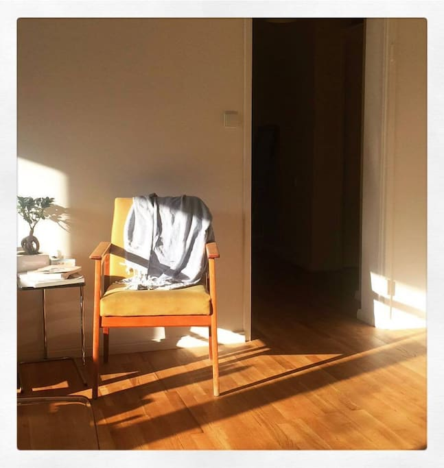 Sunny Spot in the living room