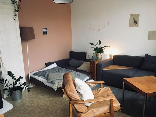 Small appartement for 1-2P. in lively Ehrenfeld