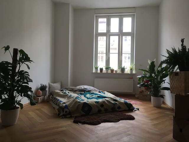 Charming room in top located neighborhood!