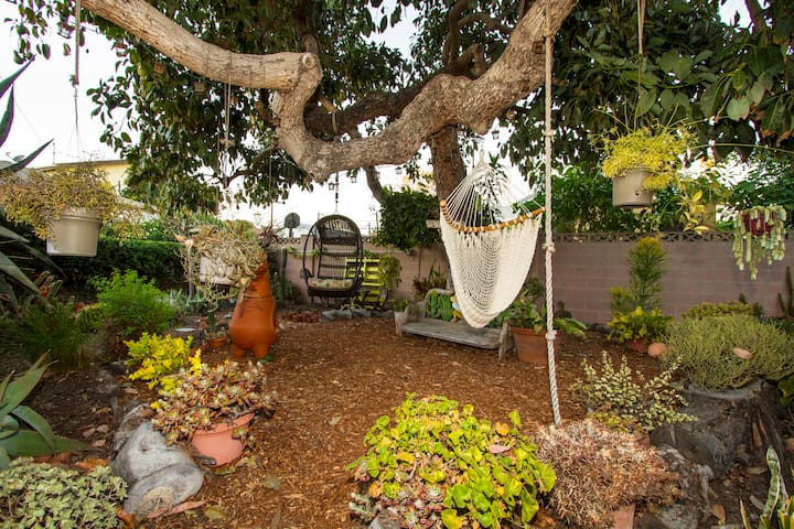 Rest area under avocado tree.  Night lights hang from the tree.  There are over 325 different species of plants,  many native to California, in the garden. Expect to many see butterflies and birds!