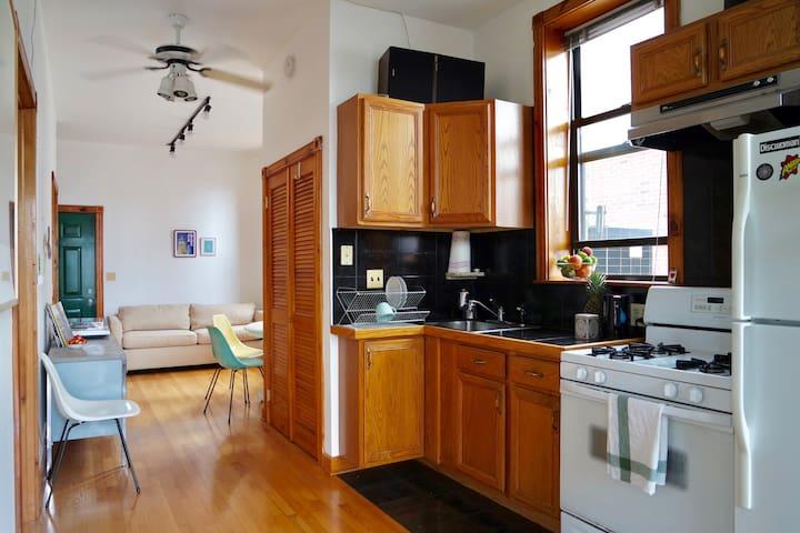 Cozy apartment in great Ukrainian Village