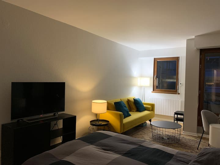 Appartement carré d'or Strasbourg hyper centre