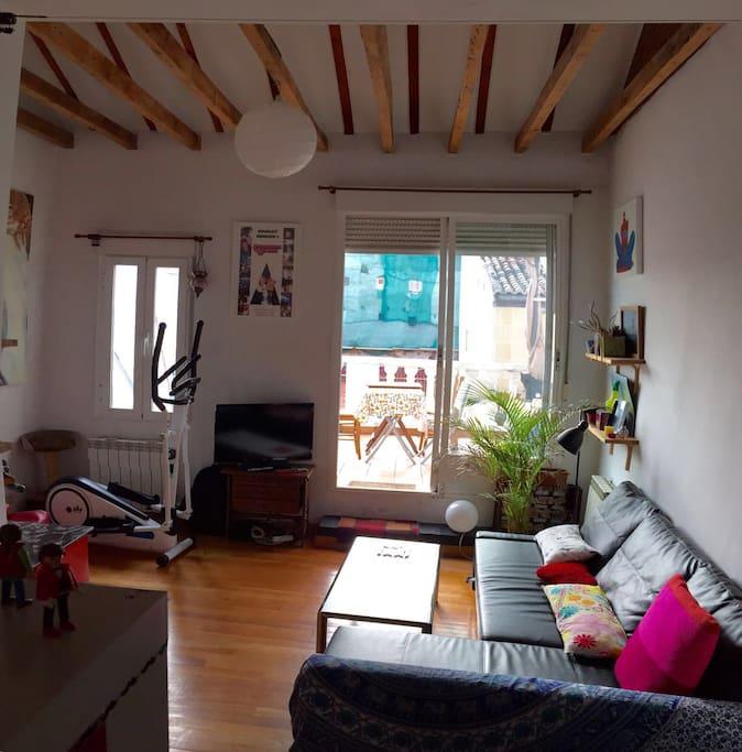 Living room, with the convertible sofa and an elliptic bike / Le salon, avec le canapé-lit et un vélo elliptique / El salon, con sofa cama y eliptica