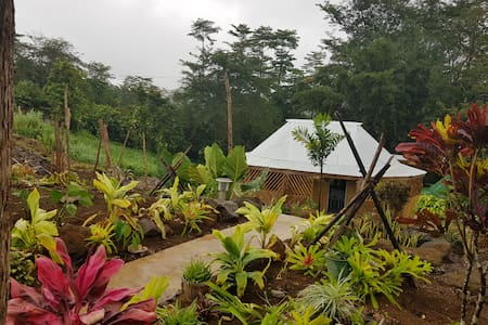 Tuamasaga Eco-Lodge in the cool and lush tropics.