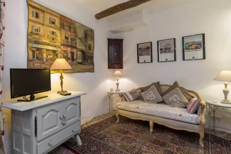 In heart of L'Isle sure la Sorgue - Apartament