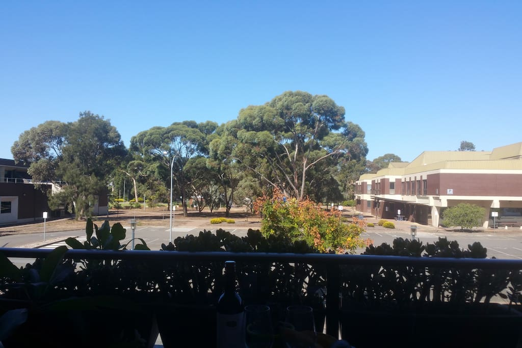 View from the balcony over to the University of South Australia