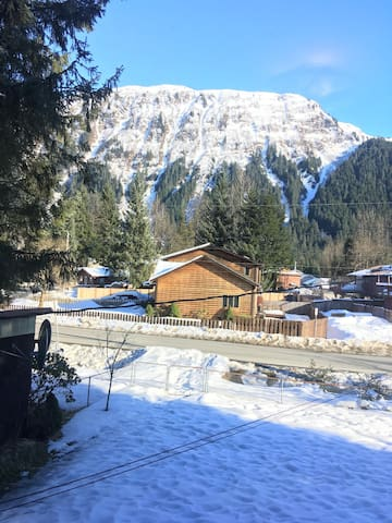 Glacier Guest Room -15% OFF ON TOURS, private room in shared home