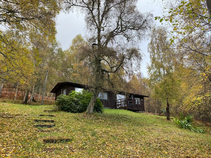 Woodland Chalet No 7, Near Lochness