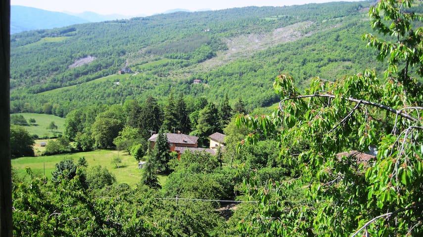 Il Mio Rifugio - stanza 5 - Rocca Pitigliana - Villa