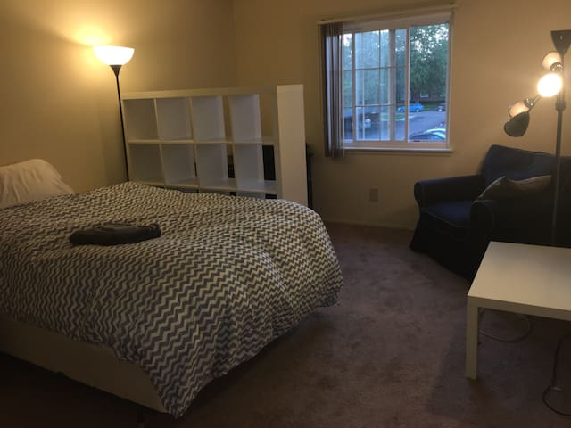 Luxury Apartment Walking Distance From MI Stadium - Ann Arbor - Apartament