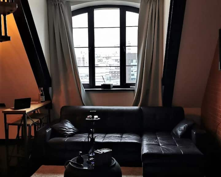 Cosy apartment near the city center
