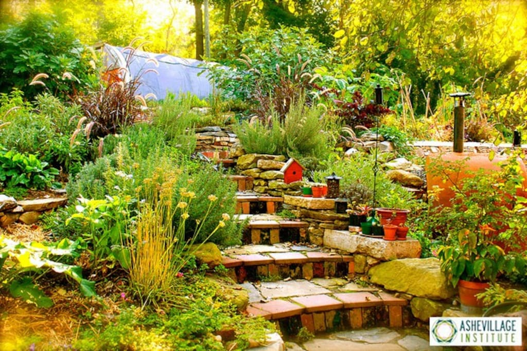 The Sanctuary's beautiful, edible, medicinal, pollinator-friendly, terraced, spring-summer-fall, permaculture wonderland.
