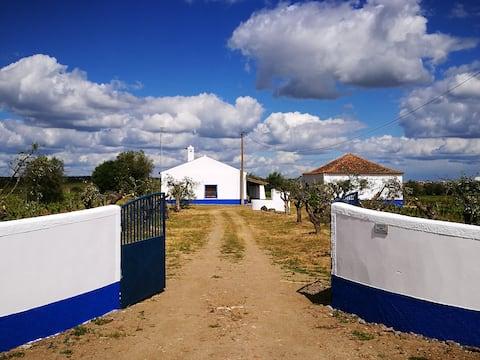 Monte dos Velhos (GPS: 38.433303, -7.579657)