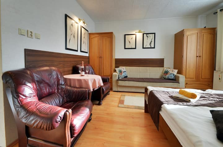 Apartments VILLA IVICA /Marianka /Studio PREMIUM