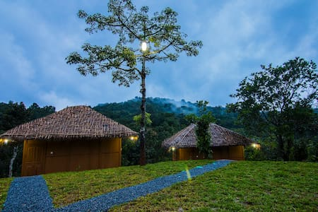 Experience eco-tranquility & local living, Wayanad